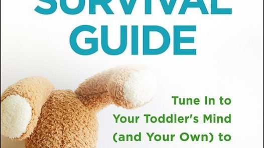 Tantrum Survival Guide