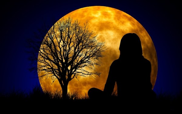 moon with person and tree